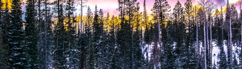 Utah Winter Photography