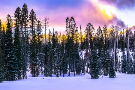 Utah Winter Photography