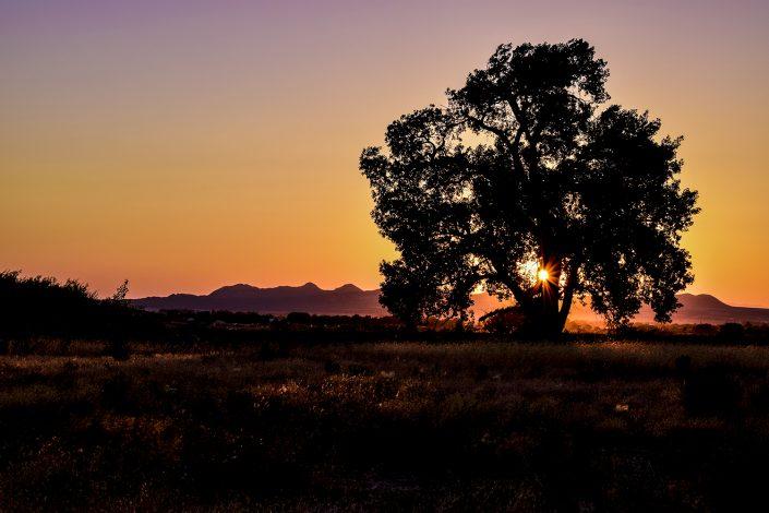 Cedar City Sunset